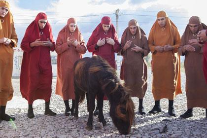 Le chevalin, vulgaire poney adulé par les dévôts de la Grande Bubunerie